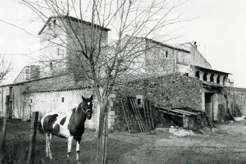 Vista des del Sud del Mas Sitjar. Foto J.B. i T. agost de 1985